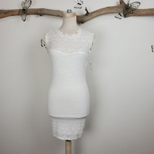 French exchange stretchy white lace dress